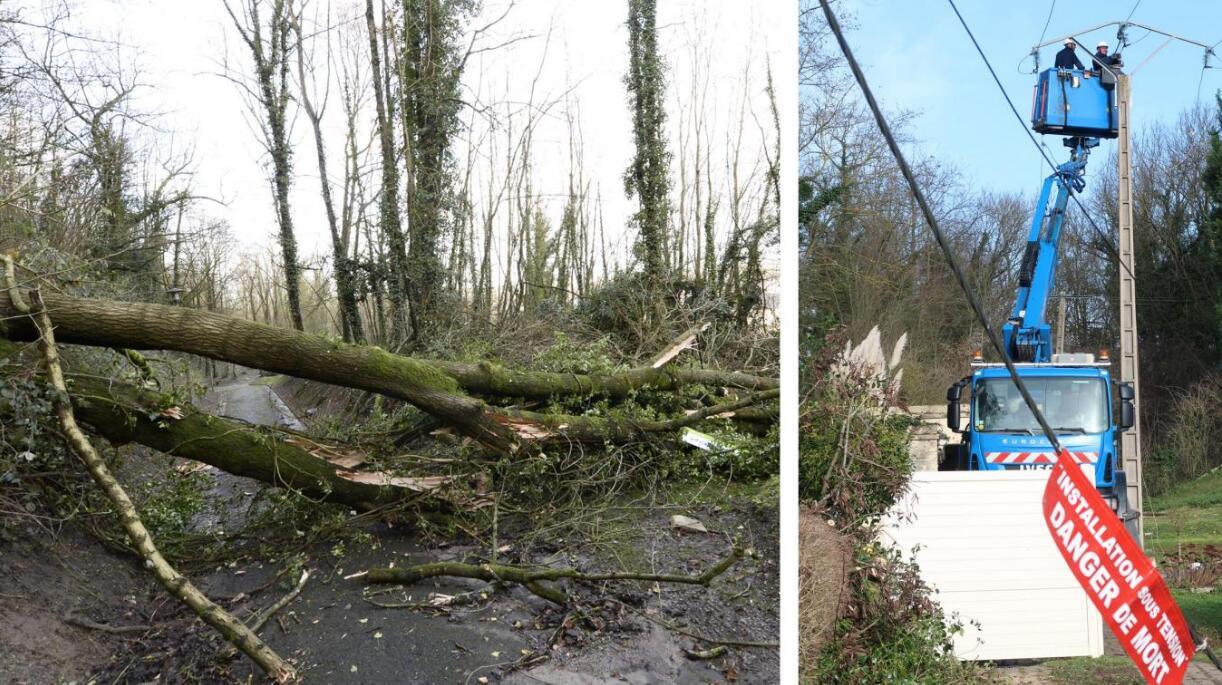 """""""埃莉诺""""风暴新年肆虐法国 造成1死15伤"""