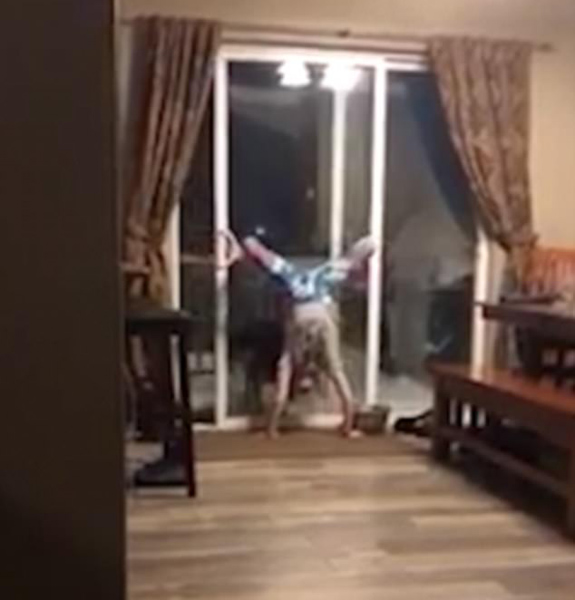 美女孩侧翻倒立放狗进屋 梦想当体操运动员
