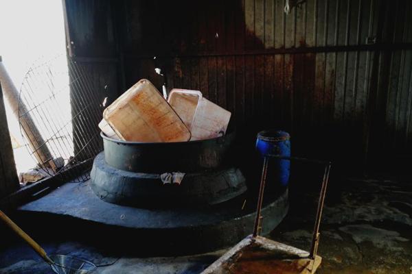 假驴肉黑作坊被查 纸箱上有猪肉字样