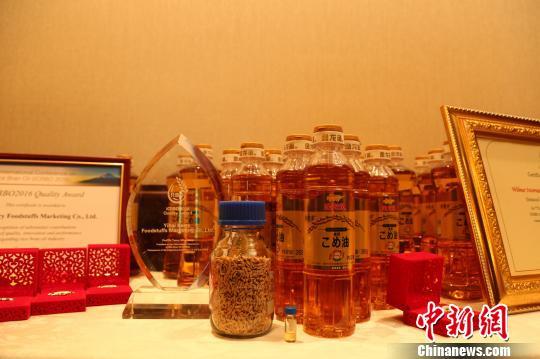 金龙鱼稻米油及获奖证书展示台。 吕少威 摄