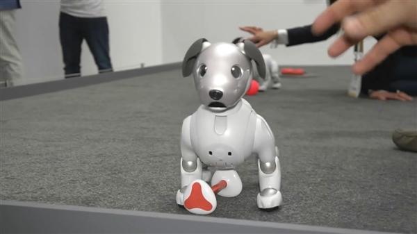 苦等18年 索尼新机器狗AIBOCES正式亮相