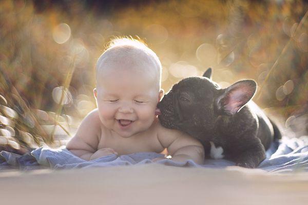 狗年看最暖心画面:萌娃与萌犬的日常就是治愈系合集