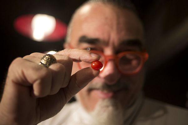 以色列培育出超小番茄 袖珍无比仅钱币般大小