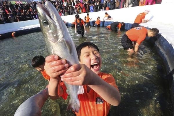 韩国华川鳟鱼庆典开幕 游客凿冰捞鱼人山人海