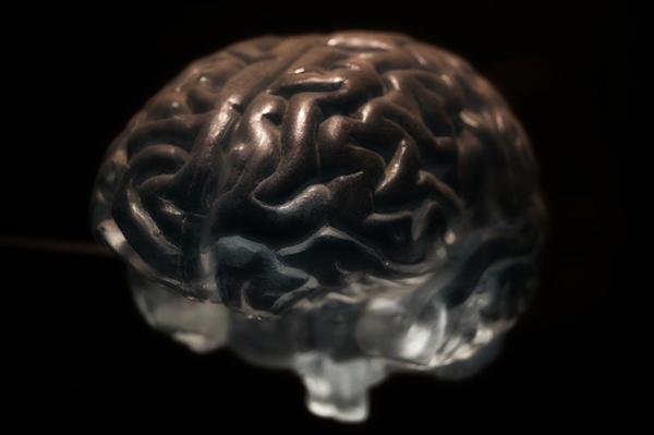 研究发现信息可植入脑中 有望拯救脑损伤患者