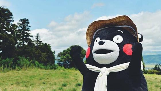 日媒:日本为何将熊本熊印在中国共享单车上