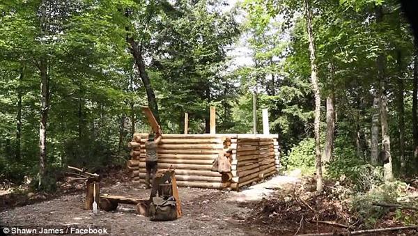 回归自然!加拿大男子徒手建小木屋吸粉20万
