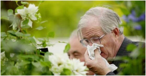 研究:强忍不打喷嚏或可致耳喉受损