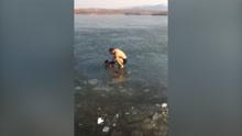 山东一男子冰下游泳 险酿意外
