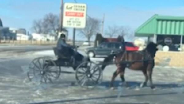 """速度与激情!美国男子驾马车冰面上""""漂移"""""""