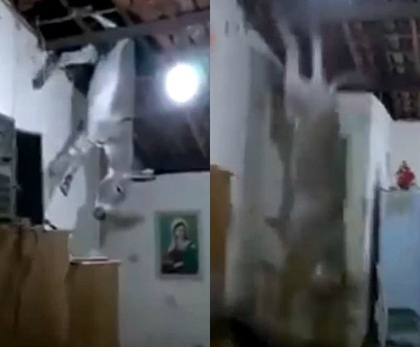 驴从天降!巴西民居屋顶掉下野驴惊呆众人