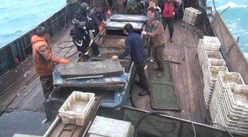 """又是一日两起!韩国再次扣押中国渔船 称其""""捕捞量日志造假"""""""