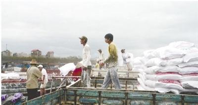 大量越南打工者来华谋生:中国机会多工资高