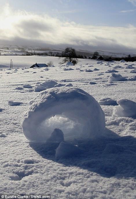 鬼斧神工的大自然!英国出现罕见风滚草雪卷