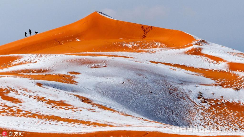 """媒体:""""全球最热""""的撒哈拉沙漠下雪了"""