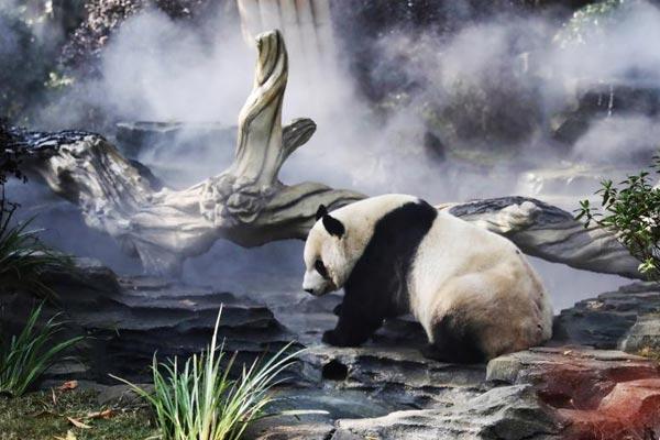 成都熊猫基地太阳产房全新升级