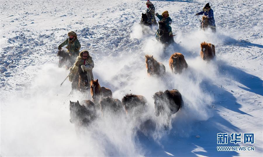 锡林浩特:飞马踏雪原