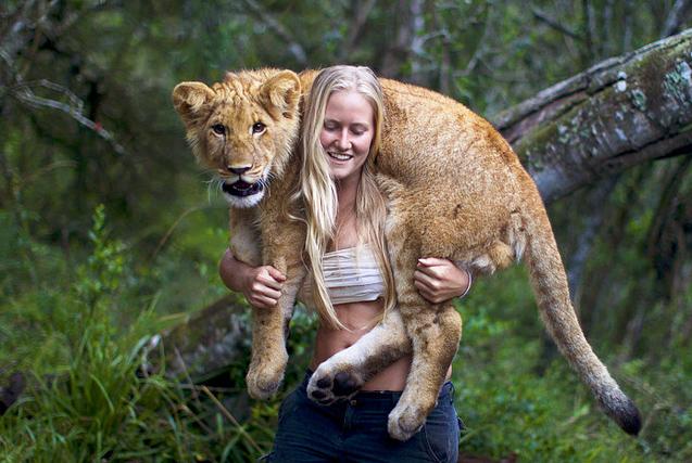 现实版美女与野兽!外国妹子无惧猛兽亲密接触