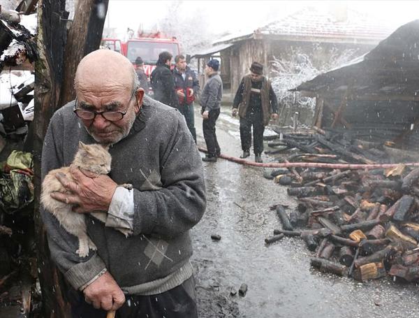 八旬老人火灾后怀抱幸存小猫感动社会获救济