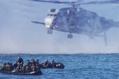 美军带日本自卫队练夺岛