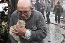 八旬老人火灾后怀抱幸存小猫