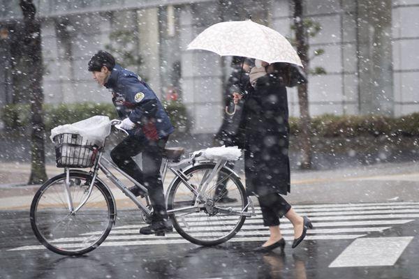 日本东京迎来2018年第一场大雪 部分交通瘫痪