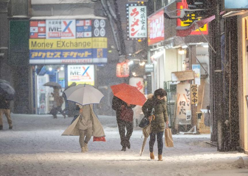 东京迎来大雪天气 雪花纷飞寒气逼人