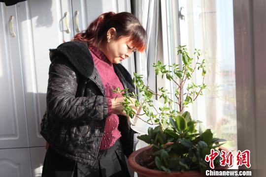 """甘肃农民无担保贷款""""住楼房"""":再也不用点煤炉了"""