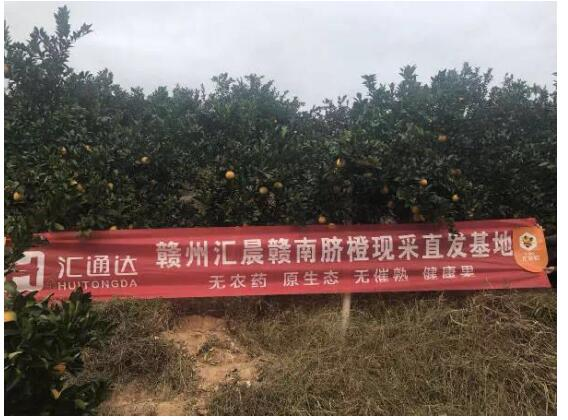 农村生态电商持续赋能 汇通达欲助百县农特产上行