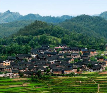 贵州丹寨:产业+旅游 脱贫有劲头