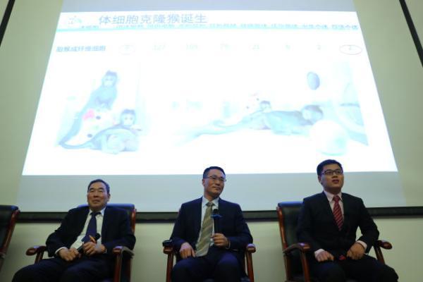 意义重大,世界首只体细胞克隆猴在上海诞生