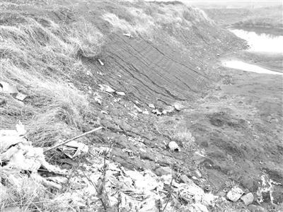 母亲河受伤:万吨工业垃圾倾倒铜陵长江堤坝内