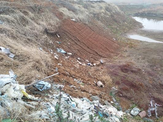 这是在安徽省铜陵市义安区一处长江堤坝内的倾倒点,凹处呈红褐色,旁边随处可见白色垃圾,刺鼻的气味随风飘来。记者采访了解到,去年5月,有人非法将62.88吨危险废物——酸洗污泥从浙江嘉善运到安徽,倾倒在这里。 记者 姜刚 摄