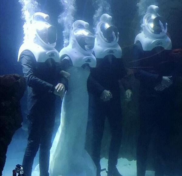 英情侣获真人秀赞助在鱼缸中举办浪漫婚礼