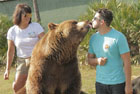 美母子养熊14头胜似亲人