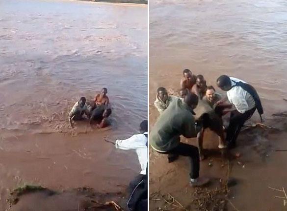 勇敢!肯尼亚男子跳入鳄鱼出没河中救落水小象