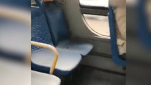 美到窒息!公交车内飘雪花乘客看呆