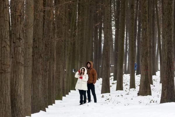 武汉迎强降雪 市民雪地撒欢