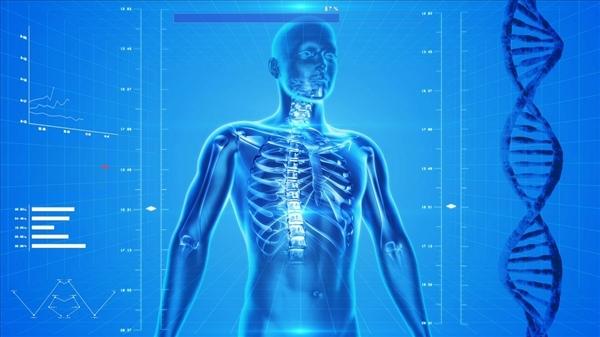 人类头部如果能成功移植 那你还会是你自己吗?