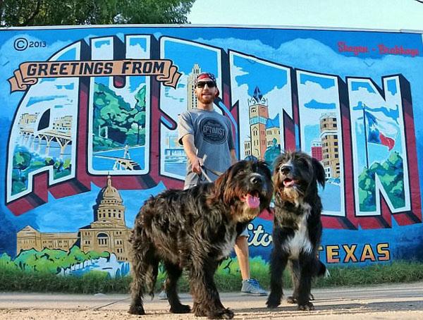 有爱!美善良公路旅行者沙漠救出两小狗共游北美