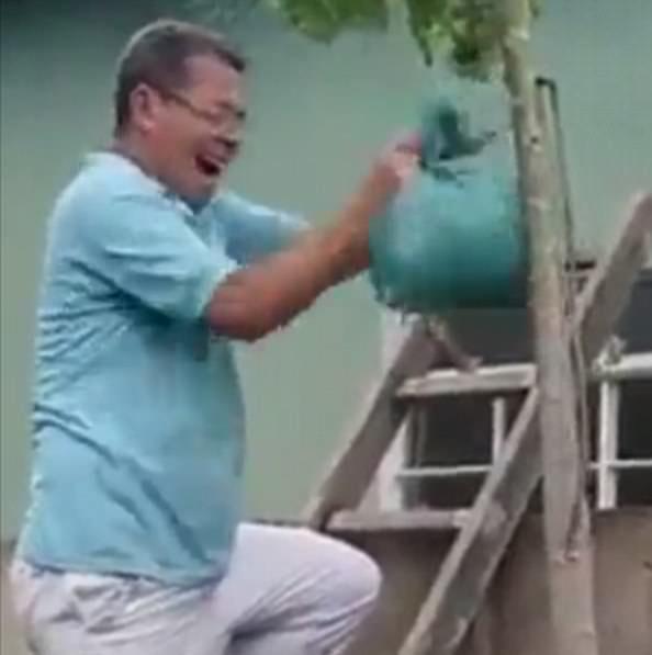 悲剧!国外男子用购物袋除蜂巢惨遭黄蜂追咬