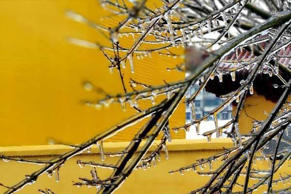 黄墙红瓦庄严宁静 南昌千年古寺的别样雪韵