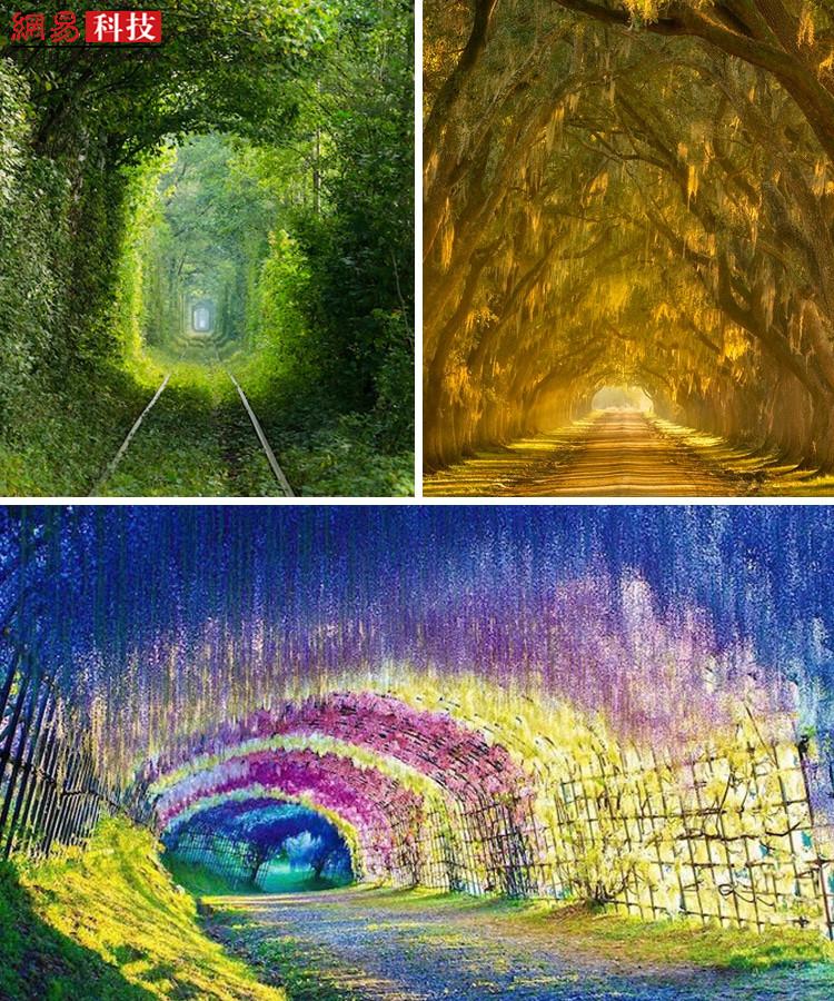 地球是一个神奇的地方。千娇百媚的风光,有时迷雾笼罩,有时惊现彩虹,大自然的魔力让我们仿佛置身仙境。让人以为误入童话的莫过于一些天然隧道,在这些地方,鲜花、树干、枝叶或岩石形成了中空的路径,美丽的花、高大的树、闪烁阳光的绿叶和多节的枝干仿佛拥有灵动的灵魂,会让你流连忘返。下面这些地方,你会选择先去哪里?