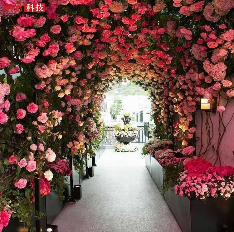 美国加州有一处名为贝弗利山的洛杉矶街道。这个鲜花通道满眼的粉色,浪漫到无可救药。女士们是否想在这里举办婚礼?