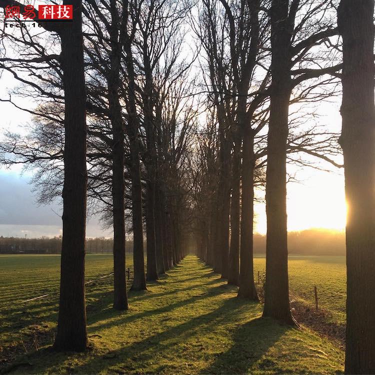 荷兰的蒂尔堡,此时太阳即将下山。