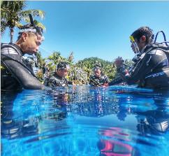 PADI休闲潜水员课程(一日发证)产品发布会举行