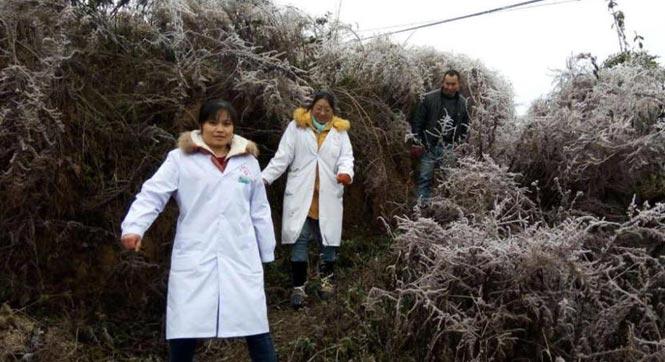 贵州遭凝冻天气 医生徒步5小时为村民接生