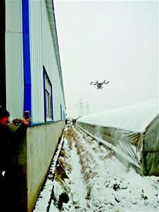 大雪后无人机拯救蔬菜大棚 挽回经济损失600多万元