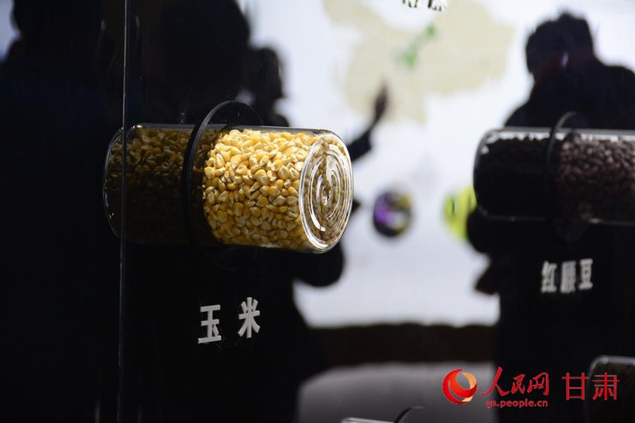 中国酒泉种子产业园种子展馆 呼双鹏 摄