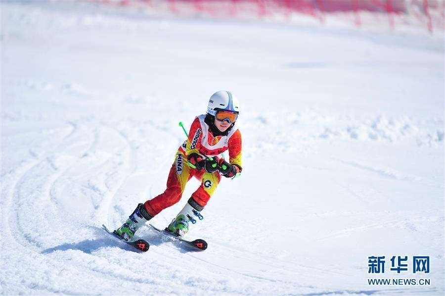 平昌冬奥会进入倒计时 中国目前获37张雪上门票